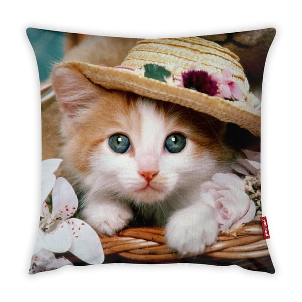 Cute Kitten párnahuzat, 43 x 43 cm - Vitaus
