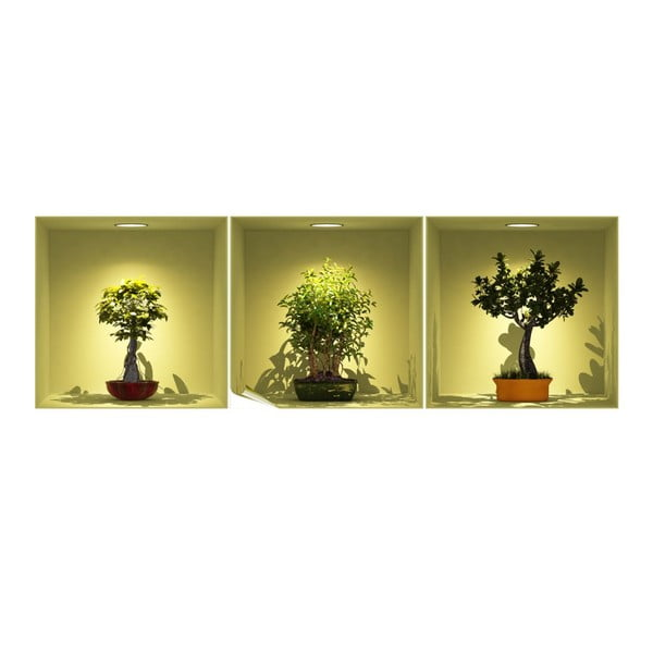 Bonsai Trees On Spot 3 db-os 3D hatású falmatrica szett - Ambiance