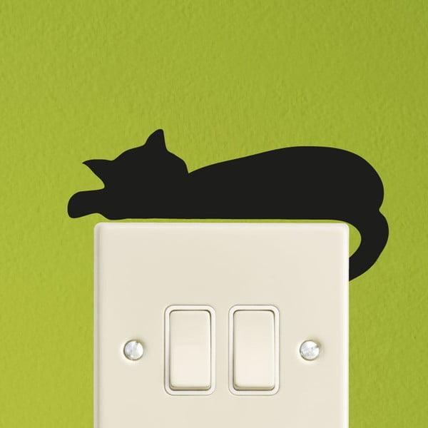 Sleeping Cat Mini falmatrica - Ambiance
