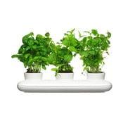 Trio Herb fűszernövényes virágcserép - Sagaform