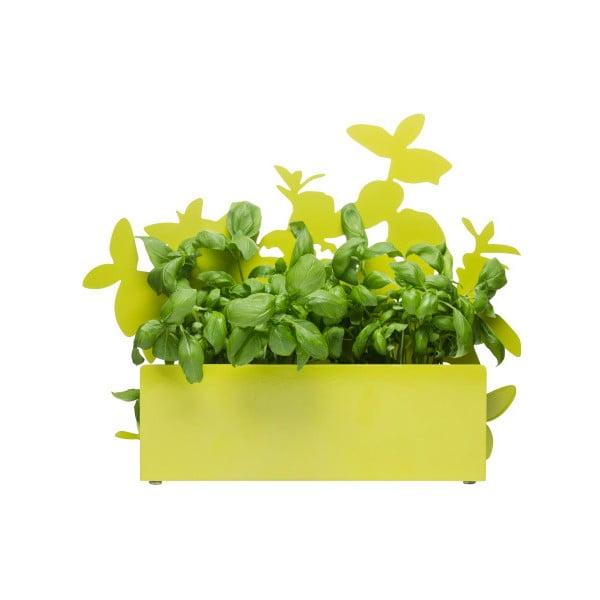 Herb zöld fűszertartó állvány - Sagaform