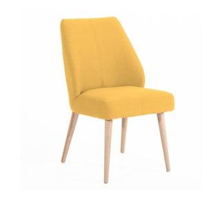 Světle žlutá čalouněná židle Max Winzer Todd