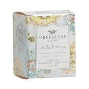 Bella Freesia frézia illatú illatgyertya, égési idő 15 óra - Greenleaf