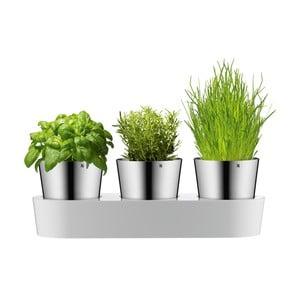Herb 3 darabos rozsdamentes fűszernövény tartó szett - WMF