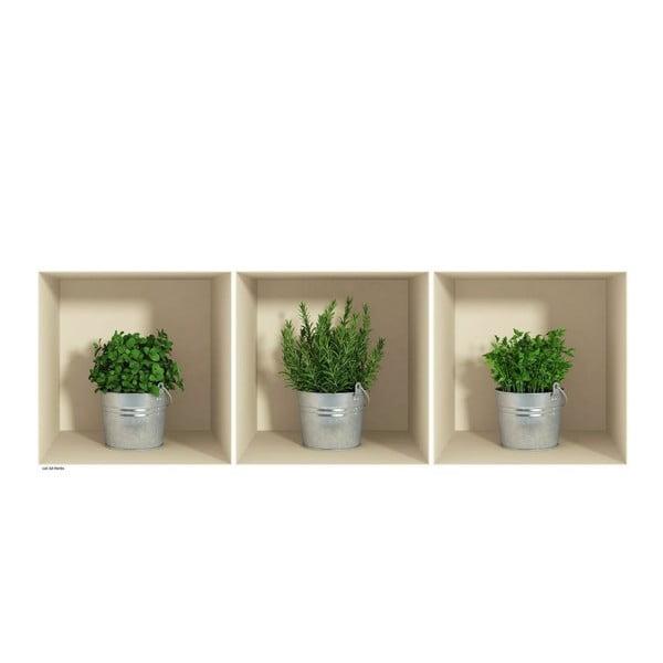 Herbs in Pot 3D hatású 3 db-os falmatrica szett - Ambiance