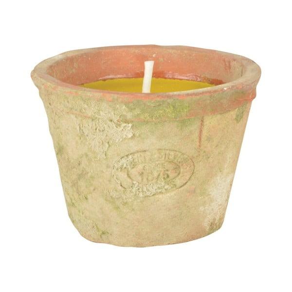 Citromfű illatú gyertya, égési idő 10 óra - Esschert Design