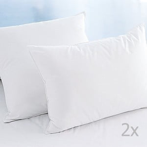 White 2 db mikroszálas párna, 50 x 70 cm