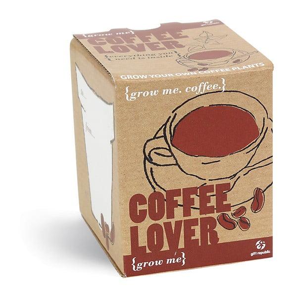 Coffe Lover növénytermesztő készlet kávémagokkal - Gift Republic