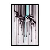 Zebra kép, 40 x 60 cm - sømcasa
