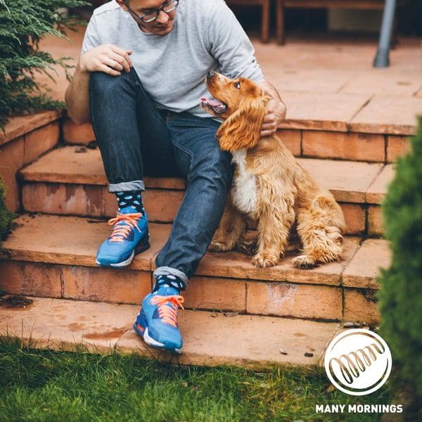 Dog Affair zokni, méret: 35–38 - Many Mornings