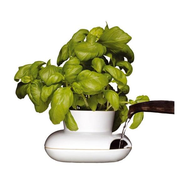 Herb porcelán kaspó fűszernövényekhez - Sagaform