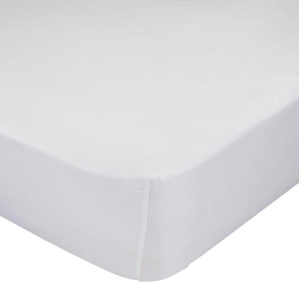 Fehér elasztikus lepedő 100% pamutból, 90 x 200 cm - Baleno