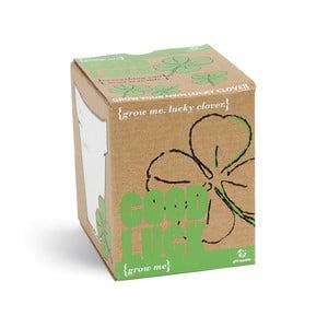 Good Luck növénytermesztő készlet lóhere magokkal - Gift Republic