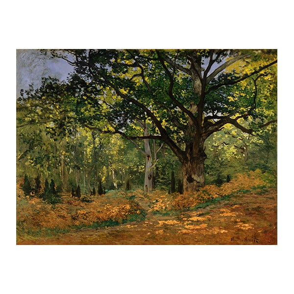 Claude Monet - The Bodmer Oak, Fontainebleau Forest kép másolat, 70 x 50 cm